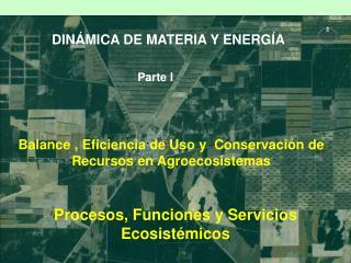 DINÁMICA DE MATERIA Y ENERGÍA