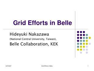 Grid Efforts in Belle