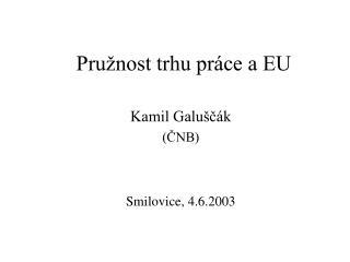 Pružnost trhu práce a EU