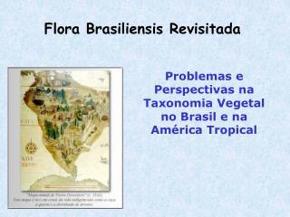 Flora Brasiliensis Revisitada