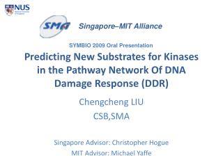 Predicting New Substrates for Kinases in the Pathway Network Of DNA Damage Response (DDR)