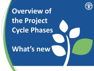 Overview of the Project Cycle Phases  What's new