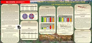 Impact of Variability in Plant Spacing on Corn Yield R.W. Heiniger and T.A. Smith