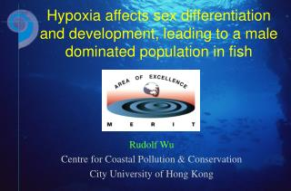 Rudolf Wu  Centre for Coastal Pollution & Conservation  City University of Hong Kong