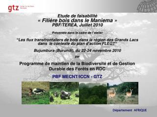 Etude de faisabilité  «Filière bois dans le Maniema» PBF/TEREA, Juillet 2010