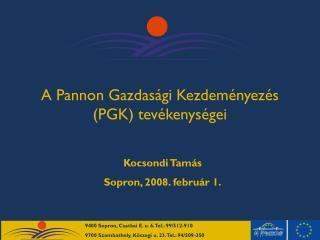 A Pannon Gazdasági Kezdeményezés (PGK) tevékenységei