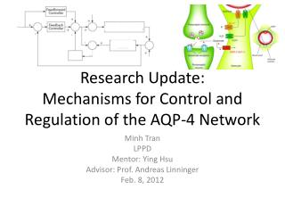 Research Update: Mechanisms for Control and Regulation of the AQP-4 Network