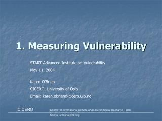 1. Measuring Vulnerability