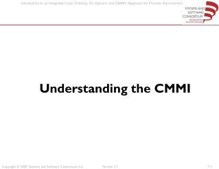 Understanding the CMMI