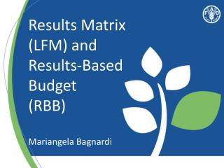 Results Matrix (LFM) and Results-Based Budget (RBB) Mariangela Bagnardi