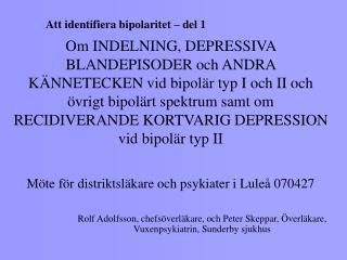 Rolf Adolfsson, chefsöverläkare, och Peter Skeppar, Överläkare, Vuxenpsykiatrin, Sunderby sjukhus