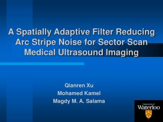 A Spatially Adaptive Filter Reducing Arc Stripe Noise for Sector Scan Medical Ultrasound Imaging