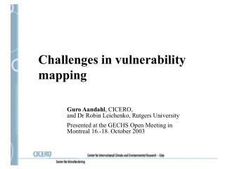 Challenges in vulnerability mapping
