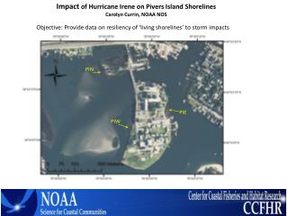 Impact  of Hurricane Irene on Pivers Island Shorelines Carolyn Currin, NOAA NOS