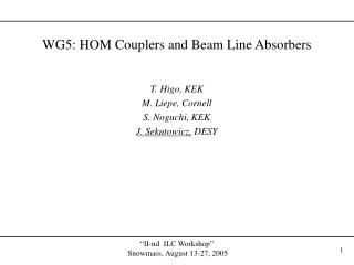 WG5: HOM Couplers and Beam Line Absorbers