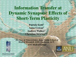 Information Transfer at Dynamic Synapses: Effects of Short-Term Plasticity