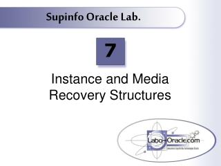 Instance and Media  Recovery Structures