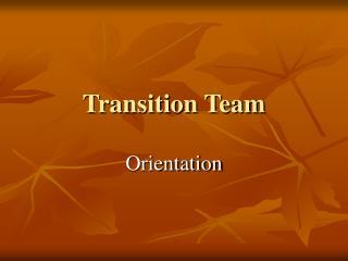 Transition Team