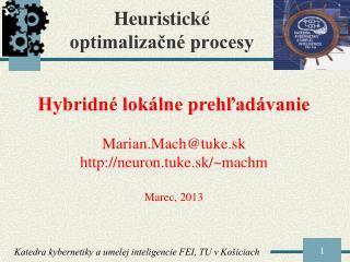 Heuristick �  optimaliza?n� procesy