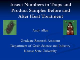 Insect Numbers in Traps and Product Samples Before and After Heat Treatment