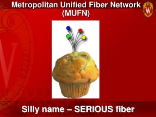 Metropolitan Unified Fiber Network (MUFN)