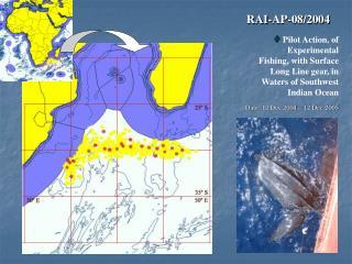 RAI-AP-08/2004