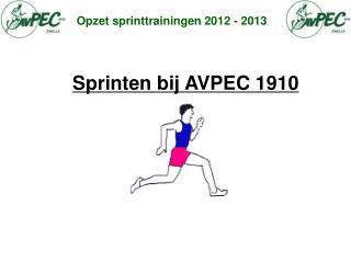 Opzet sprinttrainingen 2012 - 2013