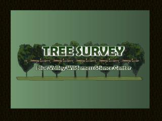 Collecting Tree Survey Data