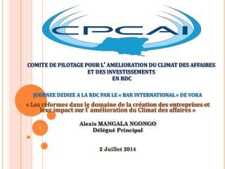 COMITE DE PILOTAGE POUR L ' AMELIORATION DU CLIMAT DES AFFAIRES ET DES INVESTISSEMENTS   EN RDC