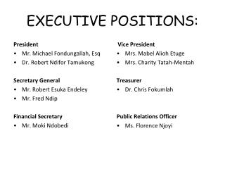 EXECUTIVE POSITIONS: