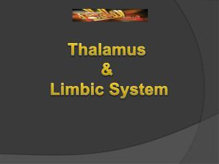 Thalamus  &  Limbic System