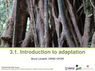 3.1. Introduction to adaptation
