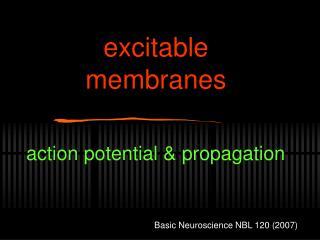 excitable membranes
