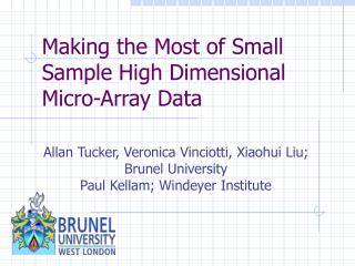 Making the Most of Small Sample High Dimensional Micro-Array Data