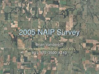2005 NAIP Survey