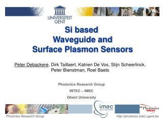 Si based  Waveguide and  Surface Plasmon Sensors