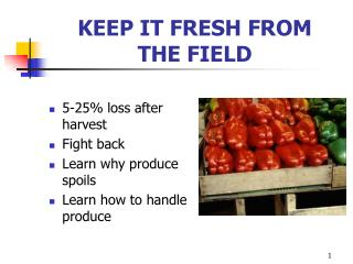 KEEP IT FRESH FROM  THE FIELD