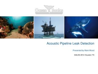 Acoustic Pipeline Leak Detection  Presented by Mark Wood SALDS 2012 Houston TX