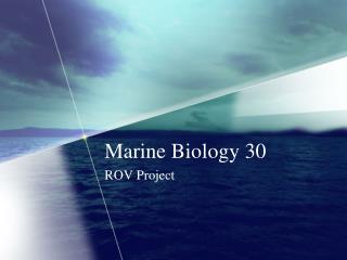 Marine Biology 30