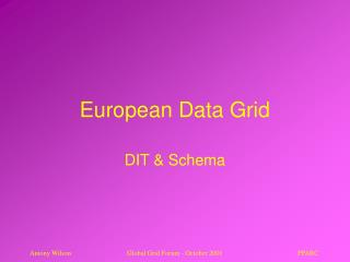 European Data Grid