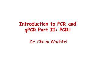 Dr. Chaim Wachtel