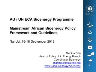Martina Otto Head of Policy Unit, Energy Branch  Coordinator Bioenergy martina.otto@unep