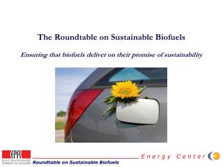 The Roundtable on Sustainable Biofuels