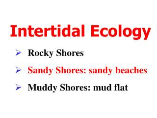 Intertidal Ecology