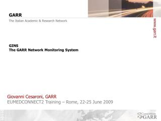 GINS The GARR Network Monitoring System