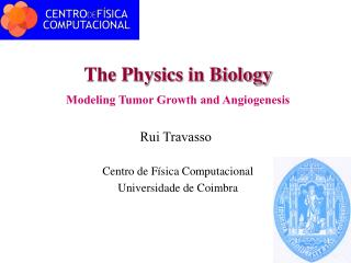 The Physics in Biology Modeling Tumor Growth and Angiogenesis