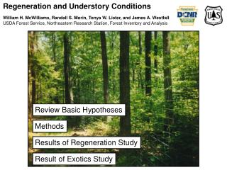 Regeneration and Understory Conditions