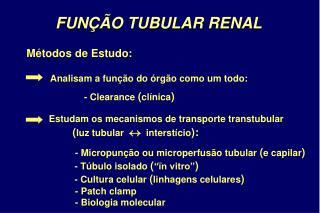 FUNÇÃO TUBULAR RENAL