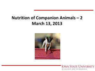 Nutrition of Companion Animals – 2 March 13, 2013