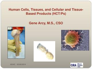 Human Cells, Tissues, and Cellular and Tissue-Based Products (HCT/Ps) Gene Arcy, M.S., CSO
